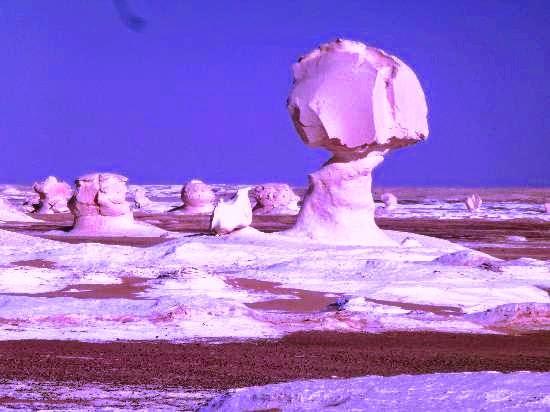 Bahariyya Oasis