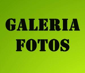 BUSCA TU FOTOS EN NUESTRAS GALERIAS