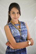 Khenisha Chandran at Jaganatakam press meet-thumbnail-13