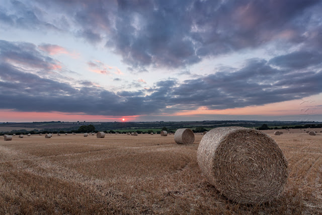A Cotswold landscape filed with hay bales at sunset by Martyn Ferry Photography