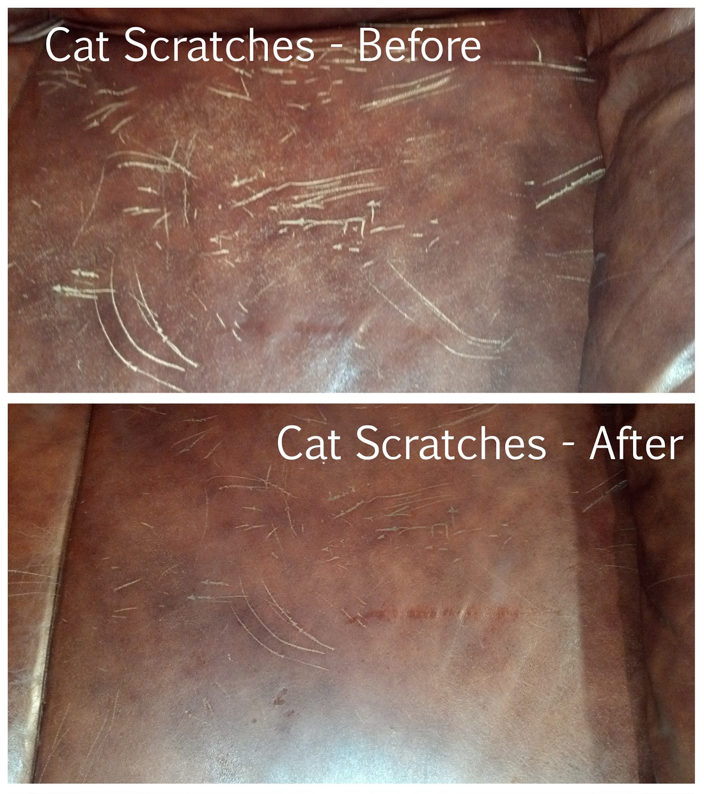 Awesome Before And After Pictures Of Cat Scratches In Leather