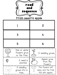 Life Cycle Of A Tree For Kids Worksheet Picture+1.png