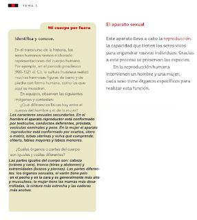Respuestas Apoyo Primaria Ciencias Naturales 4to grado Bloque I tema 1 Los caracteres sexuales de mujeres y hombres
