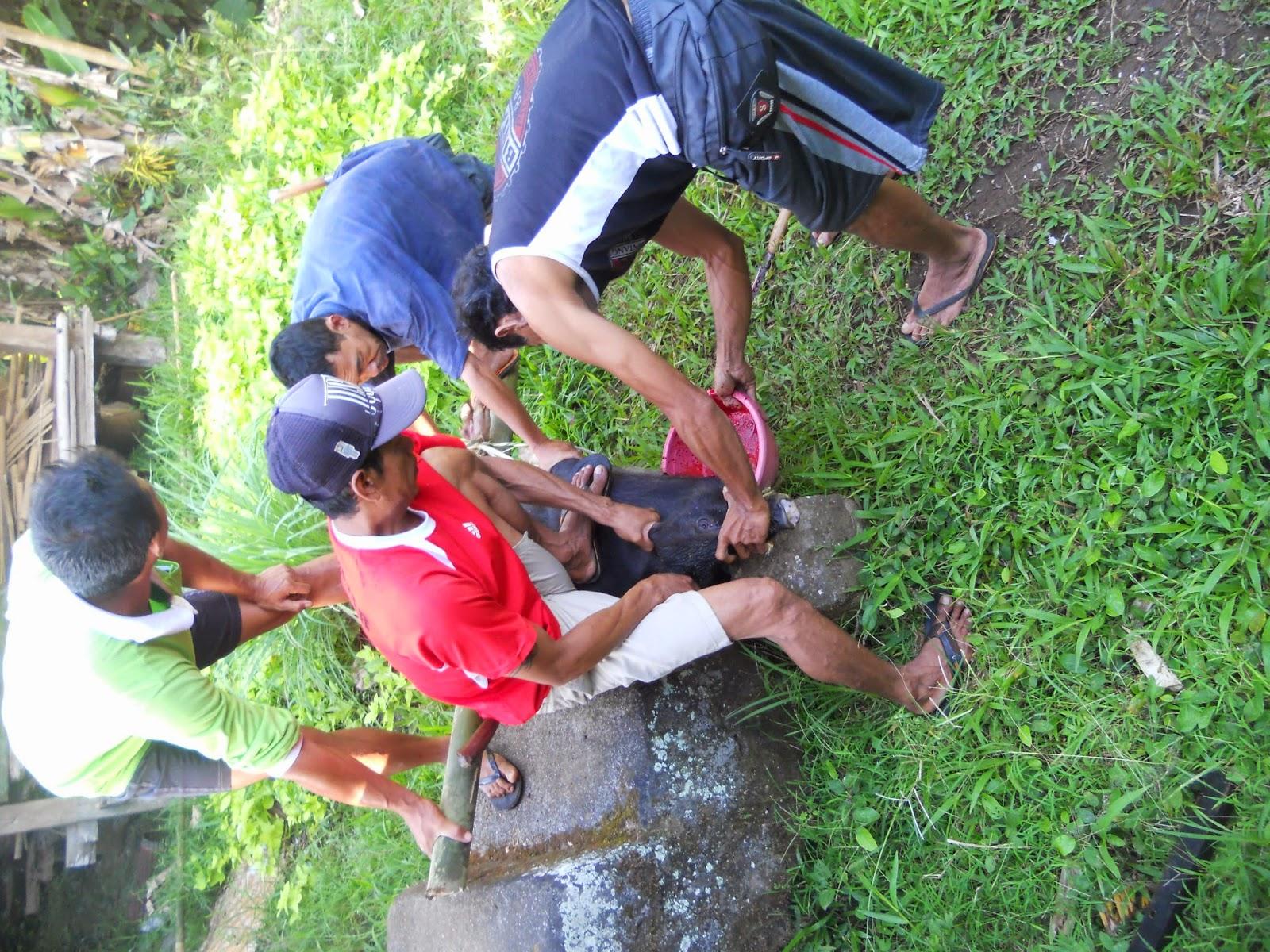 Punya www.madebayu.blogspot.com