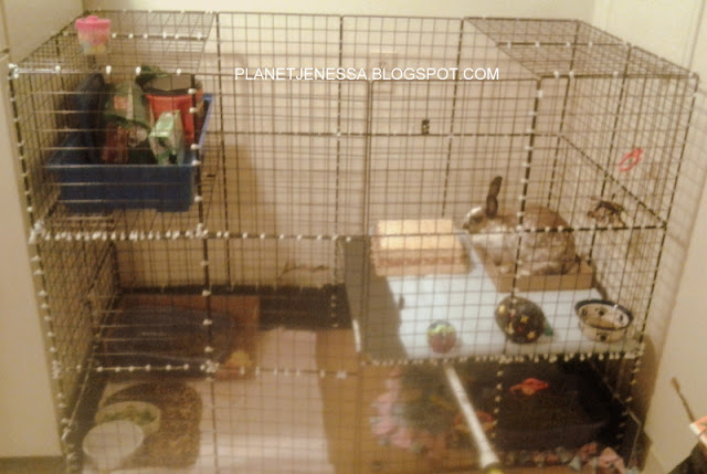 Homemade Chinchilla Cage Plans | Car Interior Design