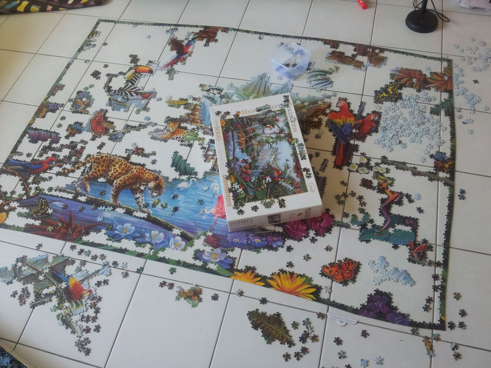 Pieces scattered everywhere!