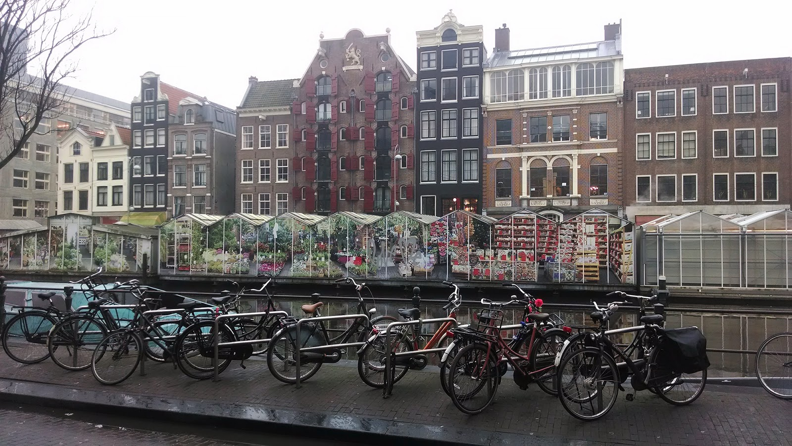 Амстердам+рынок цветов