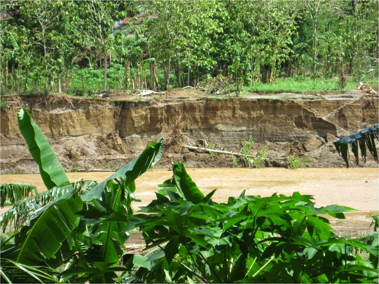 Pengertian Erosi dan Bentuk-bentuk erosi
