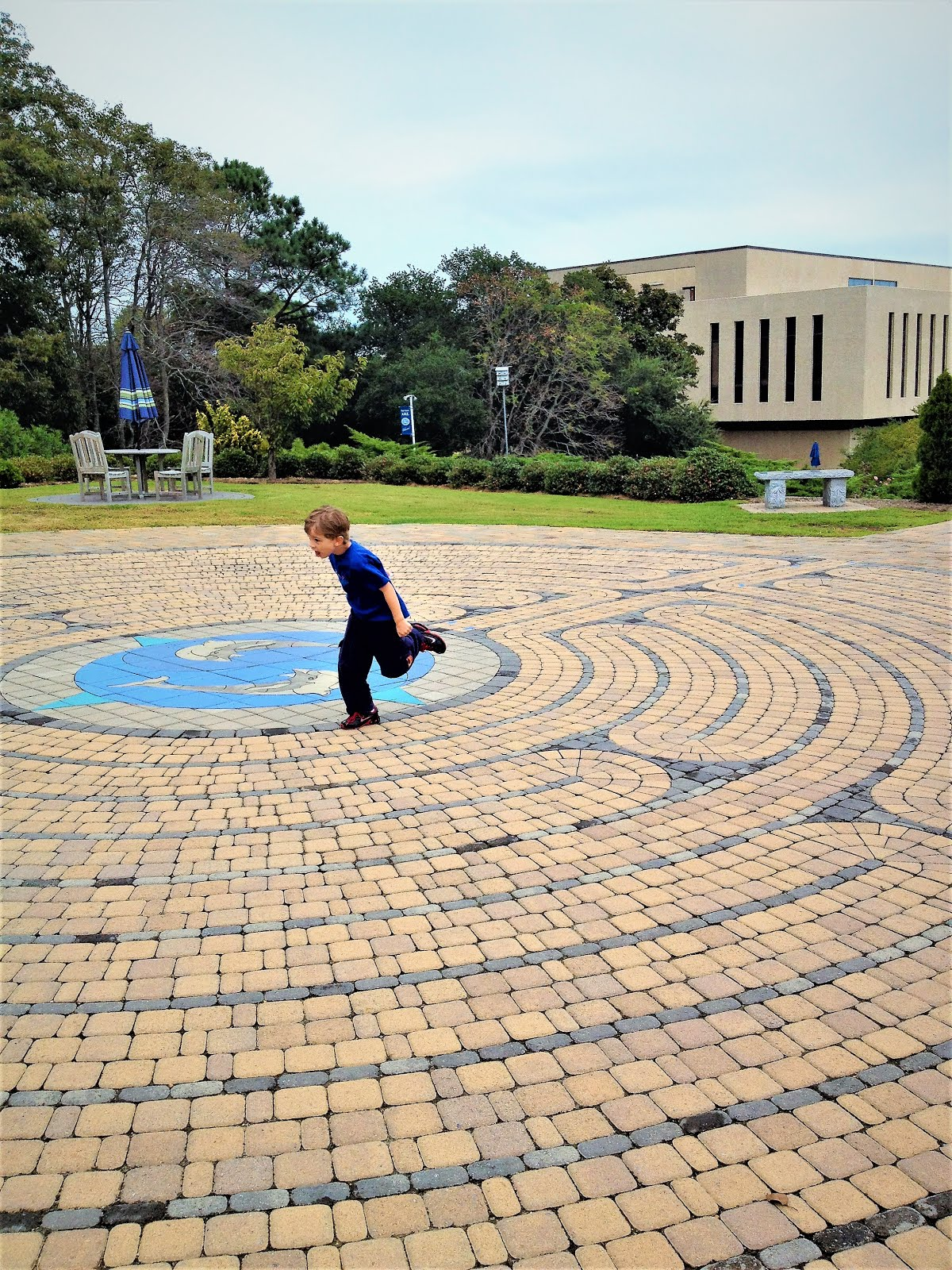 Phoenix at the Edgar Cayce labyrinth