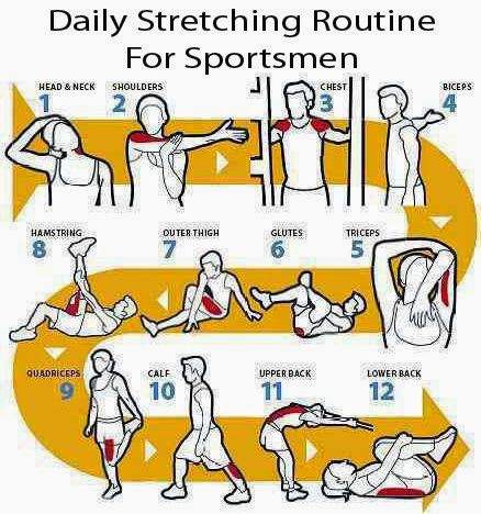 Daily stretching routine for sportsmen