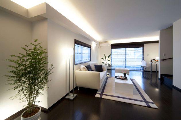 Casa bricolage decora o e artesanato plantas de for Plantas interior sin luz