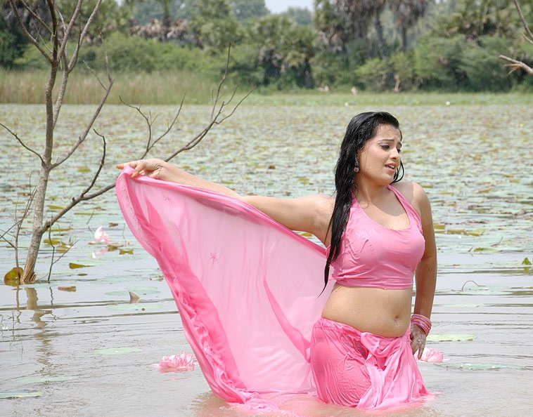 South Indian Actress Wet