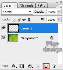 Layer 1 Photoshop