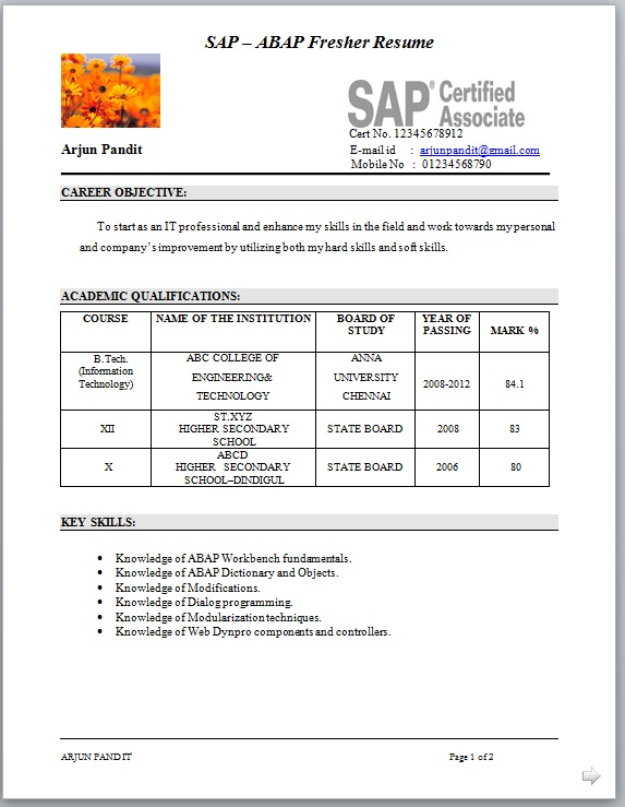 sample sap abap fresher cv format - Sap Fico Resume Sample