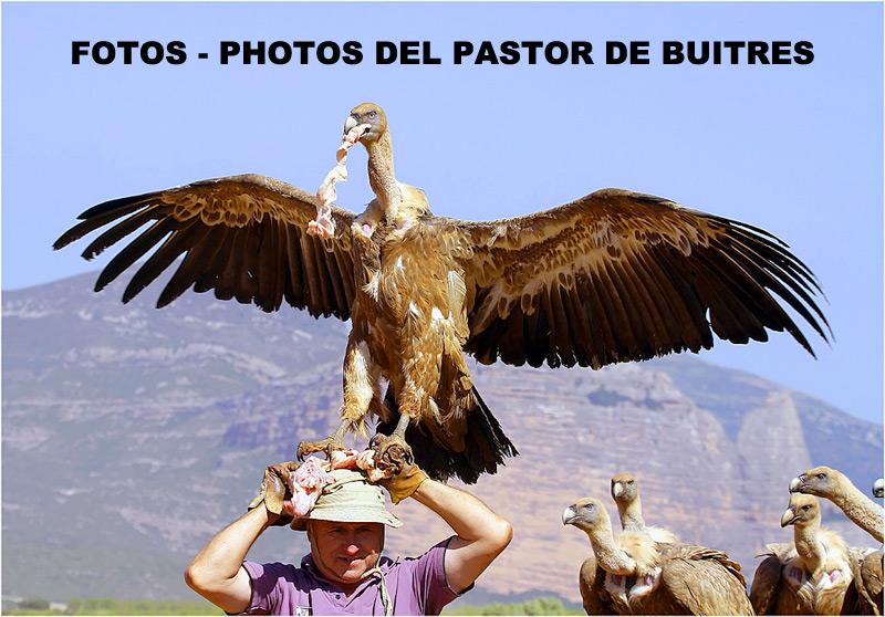 EL PASTOR DE BUITRES - FOTOS - PHOTOS