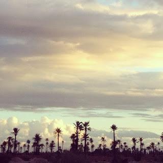 Marrakech avec ou sans stars est une palmeraie millénaire... by @LesDeuxTours