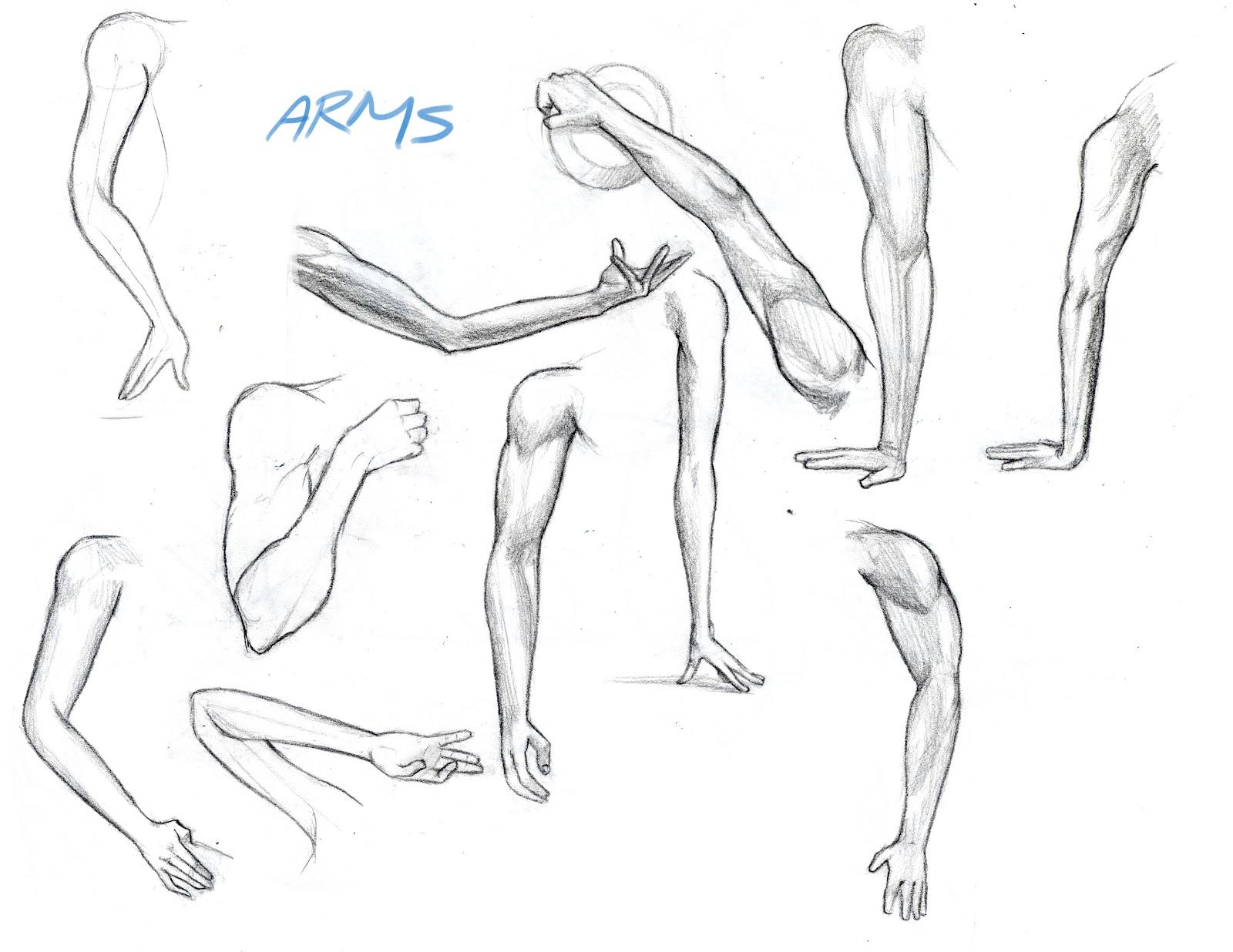 Arash Rod's Art...
