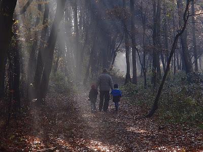 Pierwszy listopada, listopadowy spacer, Kopiec Krakusa, wszystkich świętych