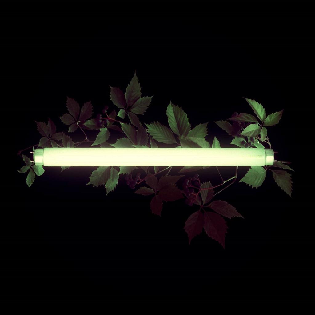 STXXCH – Pure Vibe – EP