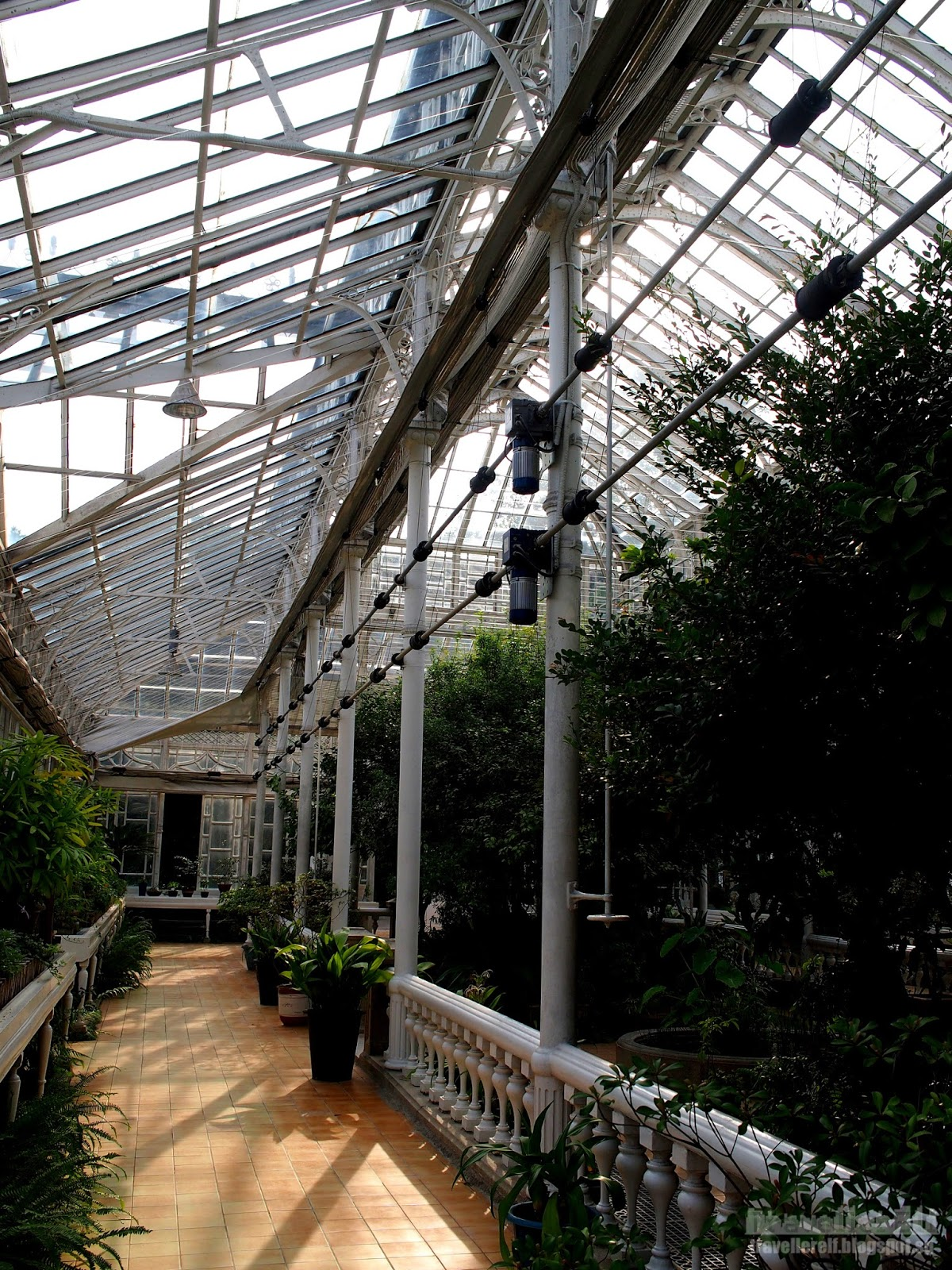 Glass House Wisconsin : Daeonsil 대온실 the great glass house of changgyeonggung