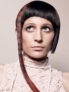 Want  Shiny Hair? More than 12 Ideas Here