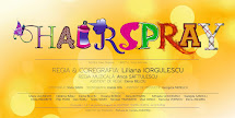 HAIRSPRAY MUSICAL in FEBRUARIE 2016