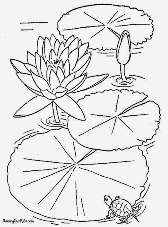 free printable flower coloring book page 003