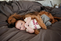 cute dogs with cute babies