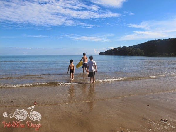 Bako National Park Beach - WireBliss
