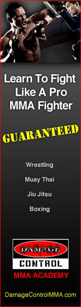Best MMA Home Training Program