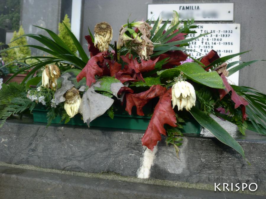 flores marchitas sobre lapida