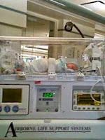Baby's Beginning