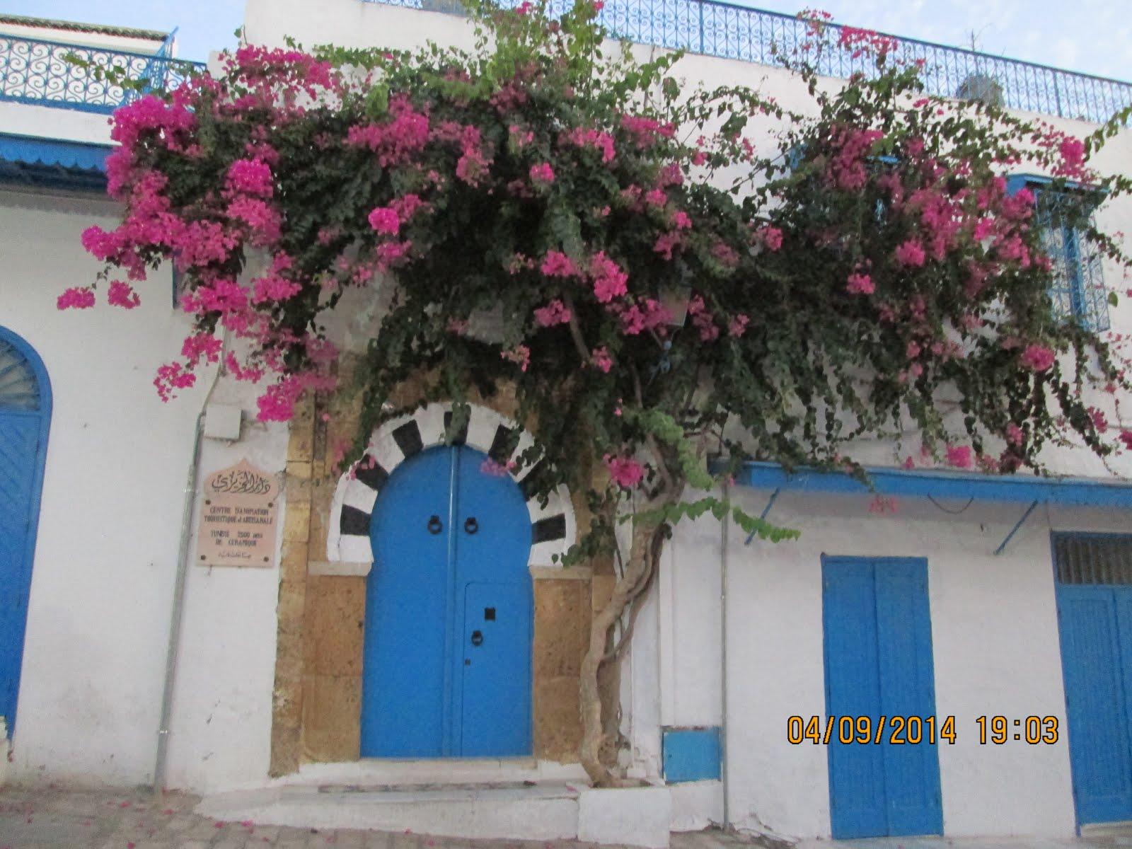 قرية سيدي بوسعيد، تونس.