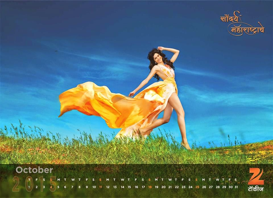 Zee talkies celebrity calendar 2019