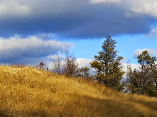 hiking at Ludington State Park