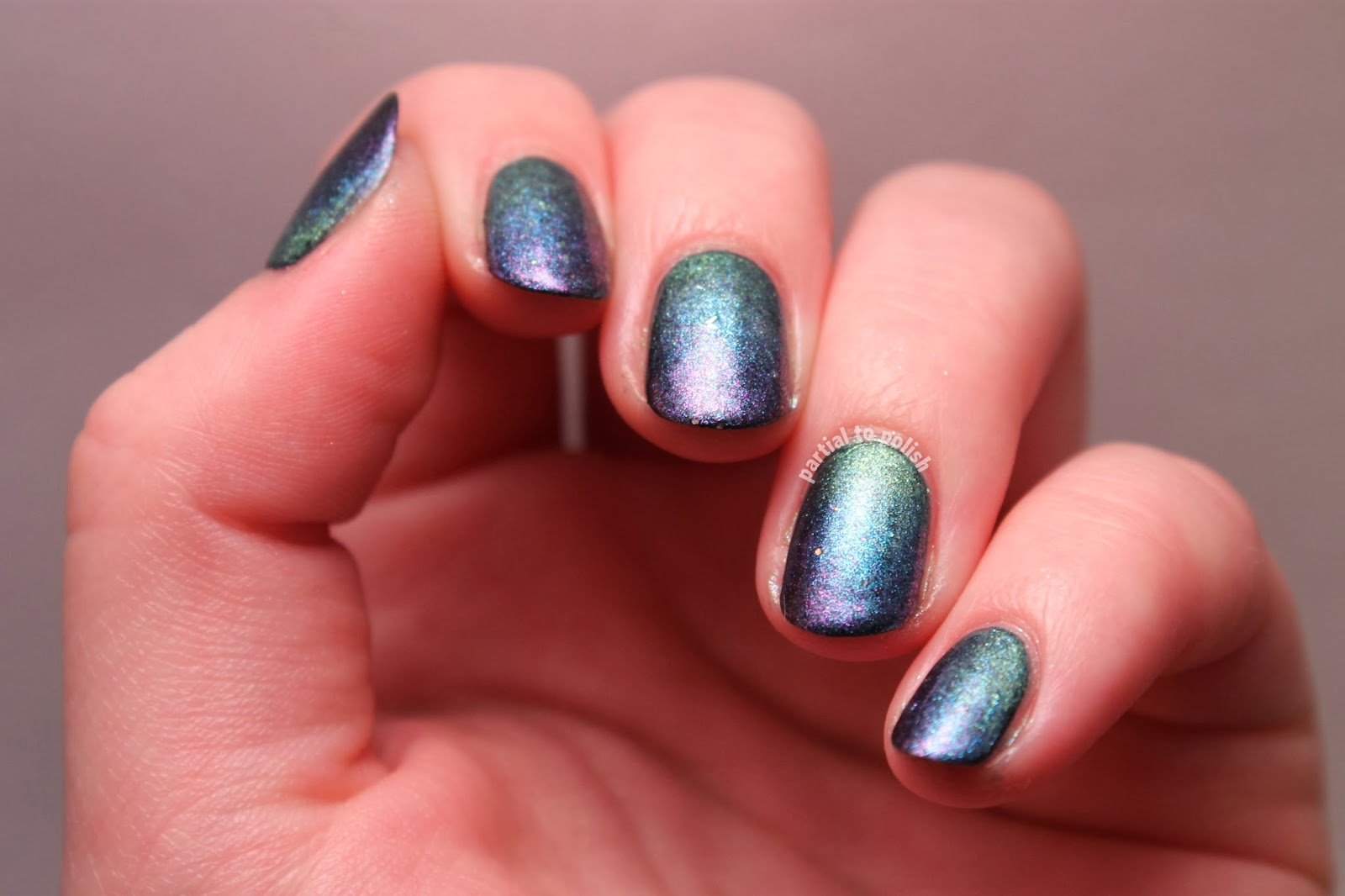 Black Sheep Lacquer Duochrome Gradient