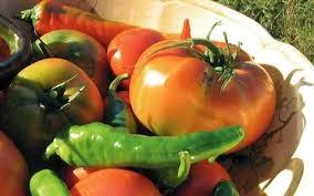 Rapporto 2013 sull'agricoltura biologica in Italia