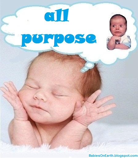 all purpose