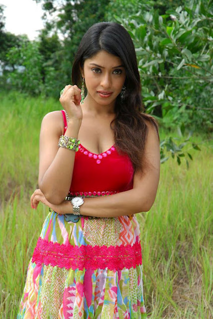 Payal Ghosh Big Cleavage Pics