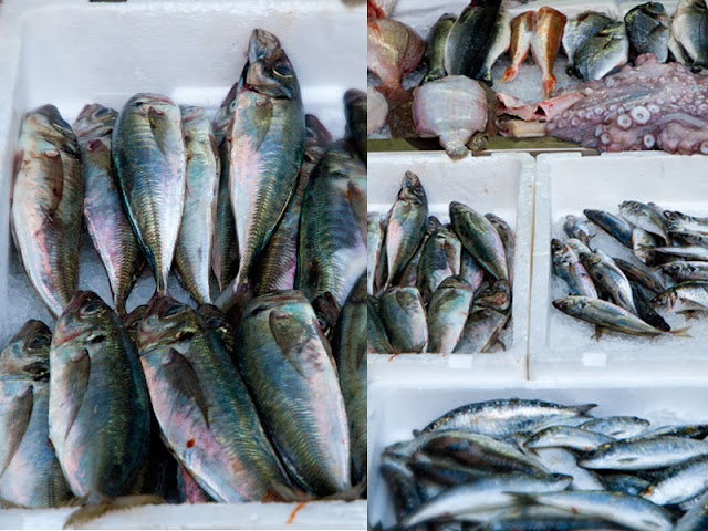 #porto, #portugal,  #market, #fish