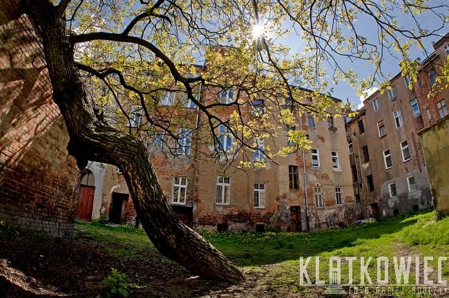 Legnica: klimaty podwórkowe