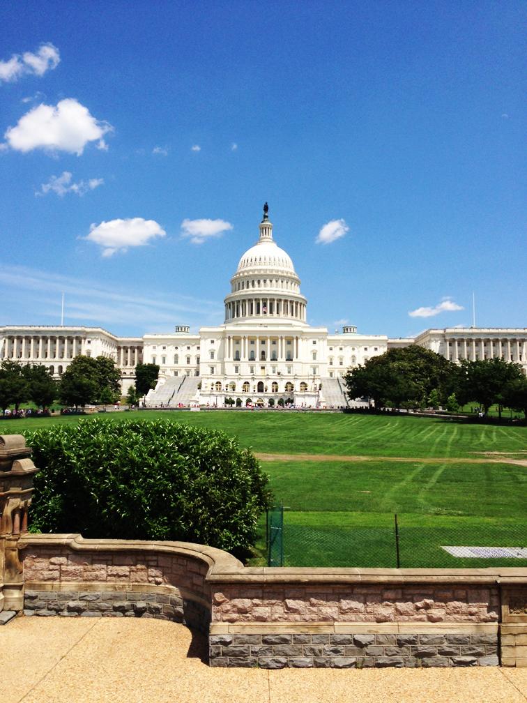 US Capitol Summer Washington DC