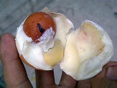 Unik Banget Dah Ada Telur di Dalam Telur