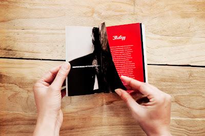 Karakter Aditude boek Identity
