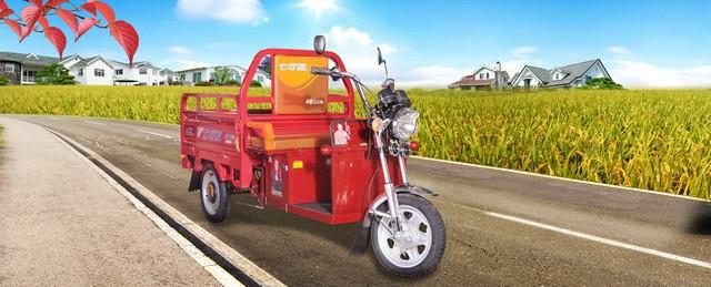 CAMPO Triciclo Electrico $950.000