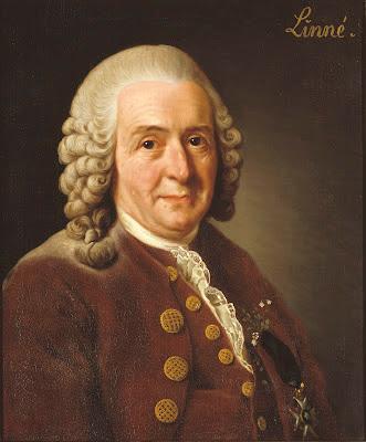 Plantas de interior - Carl von Linné