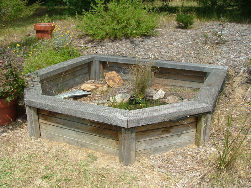 Homemade turtle tanks turtle aquariums a turtle tank set for How to build an outdoor aquarium