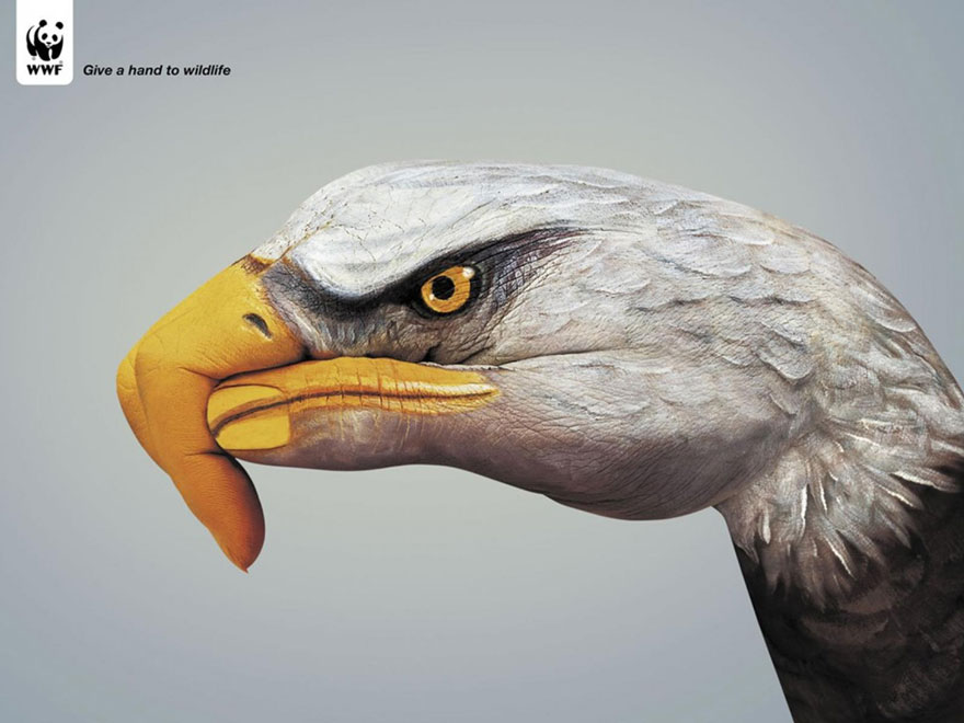 WWF: Give A Hand To Wildlife