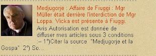 Fiuggi : Mgr Müller était derrière l'interdiction de Mgr Loppa. Vicka est présente à Fiuggi