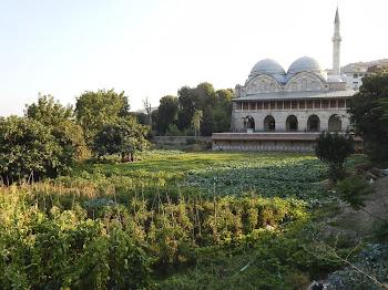 Piyale Pasha Mosque, Kasımpaşa